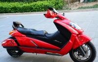 2008款铃木 GEMMA-250――伽马 红色